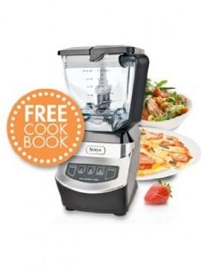 Ninja Kitchen System 1100 Food Reviews And More